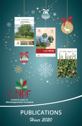 Catalogue de Noël 2020 des publications de l'IDF (jpg - 575 Ko)