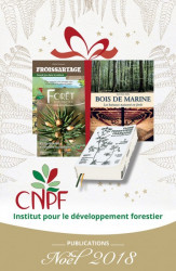 Catalogue de Noël 2018 des publications de l'IDF (jpg - 86 Ko)